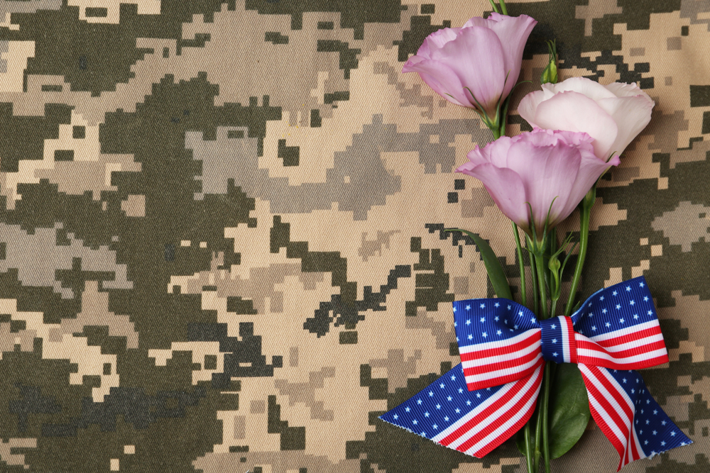Veterans Day Background Free